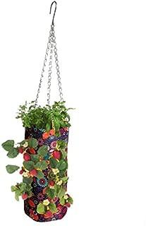 Fabric Vibrant Hanging Planter Grower (Fancy Flower)