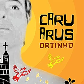 Caruarus