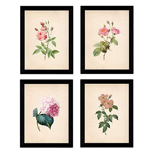 Nacnic Set de Cuatro láminas para enmarcar Estilo botánica. Set Soft Pink Rosa Suave en tamaño A4 Impreso en Papel 250 gr y tintas Fondo Papel Vintage. Flores Tonos Rosas. Sin Marco.