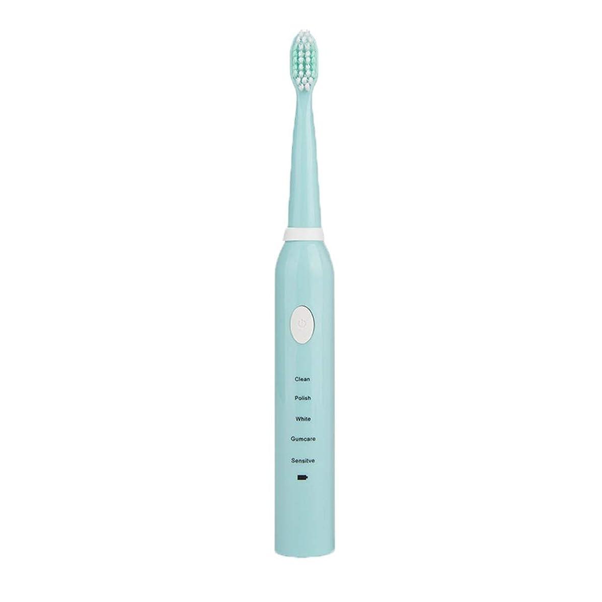 システム加害者ビルダー歯科治療 ソニック電動歯ブラシ男性と女性の大人の家庭用充電式ソフトヘア自動防水カップルモデル (Color : A)