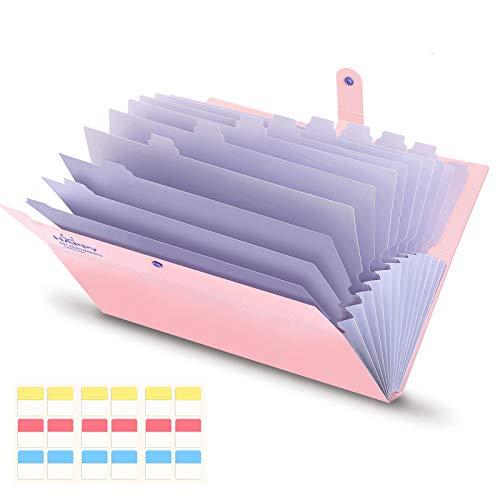 KONVINIT Cartella Portadocumenti A4 Portatile Struttura a Fisarmonica Plastica con 12 Tasche Ufficio della Società