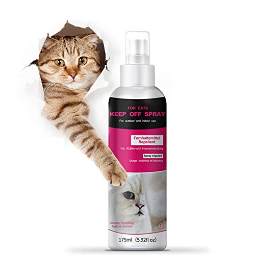 QUTOP Cat Scratch Deterrent Spray, Kittens and Cats Repellent Spray for Plants, Furniture, Floors | Non-Toxic | Alcohol Free - 175ml