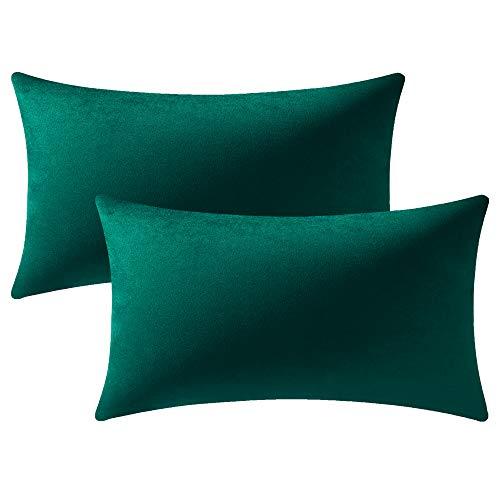 DEZENE Fundas de Cojines de Sofá Verde: Paquete de 2 Fundas de Almohada Rectangular de Terciopelo Suave de 30x50cm para Decoración del Hogar de Granja