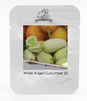 Pratiques nouvelles semences Concombre Bilyy Anhel-Blanc Ange Graines de légumes biologiques, Paquet professionnel, 20 graines / Pack # NF938