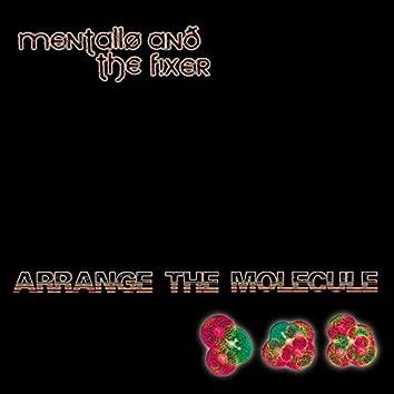 Arrange the Molecule