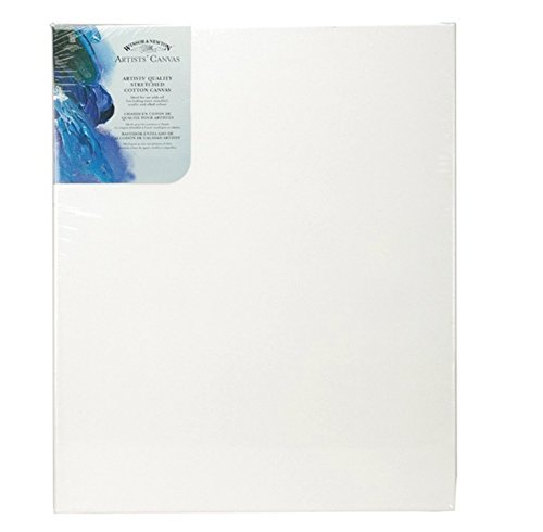 W&N Artists Stretched Canvas 8X10 Case/6