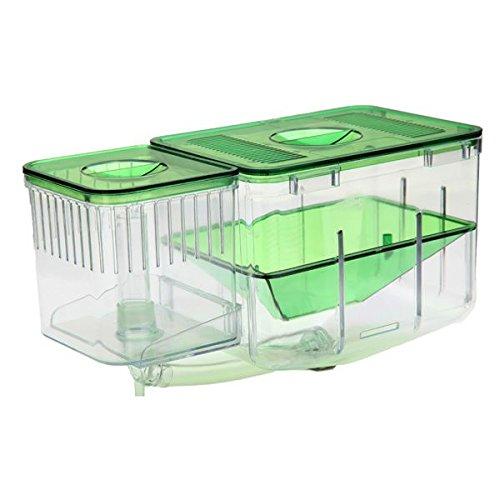 Aquarium Nursery automatische Fisch Zucht System