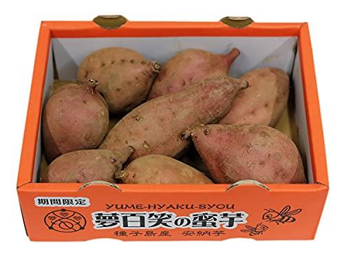 鹿児島県産 種子島さつまいも 蜜芋(安納芋) Sサイズ 8本前後入 約1kg