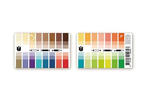 Handlicher Karten-Farbpass Frühling (Warm Spring) aus Plastik mit 30 typgerechten Farben zur Farbanalyse, Farbberatung, Stilberatung