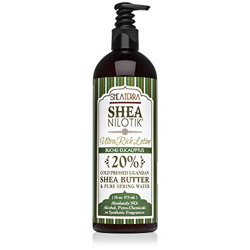 Shea Terra Organics Nilotik' Shea Butter Ultra-Rich Lotion – Buchu Eucalyptus | Natural Daily Moisturizer High in Vitamins & Minerals with Anti-Inflammatory Properties to Soothe Dry Skin– 16 oz