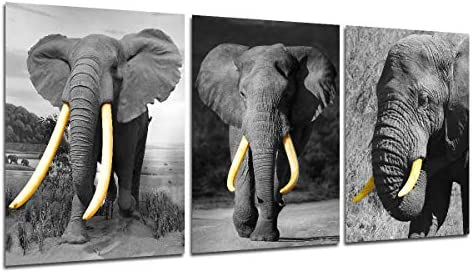 Elephant Canvas Wall Art Black and White Animal Picture Modern Home Wall Decorations for Living product image