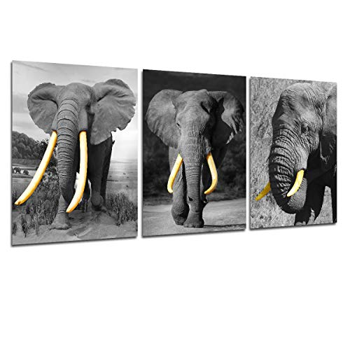 Elephant Canvas Wall Art - Black and White Animal Picture Modern Home Wall Decorations for Living Room Funny Abstract Art Print African Wildlife Landscape Artwork Giclee Print unframed 12x16 inches