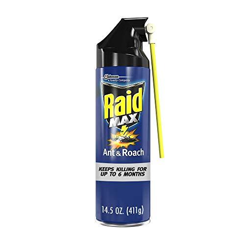 Raid Max Ant and Roach Spray (14.5 OZ,Pack - 1)