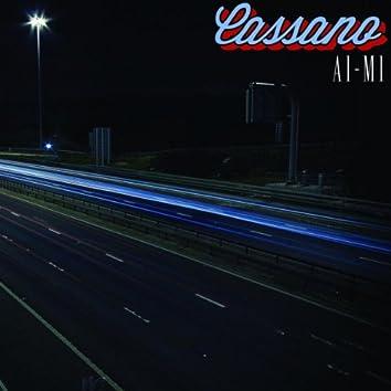 A1-M1