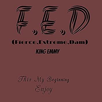 F.E.D(Fierce,Extreme,Dam)