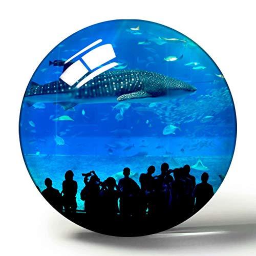 Churaumi Aquarium Okinawa Japan 3D Kühlschrank Magnet Souvenir Sammlung Reisegeschenk Kreis Kristall Kühlschrank Magnete