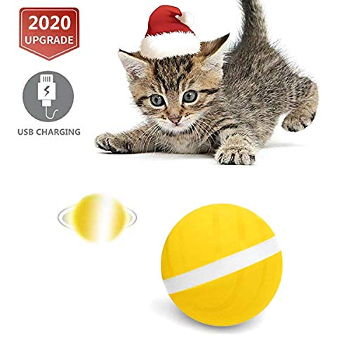 This smart ball is perfect for cats and dogs