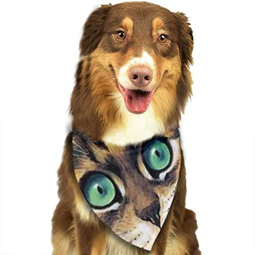 Hond Bandana tegel Mural pluizige katten door Louis Wain huisdier kitten matte sjaals accessoires decoratie voor huisdier katten en puppies