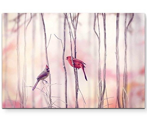 Paul Sinus Art Leinwandbilder   Bilder Leinwand 120x80cm Rotkardinal im Baum