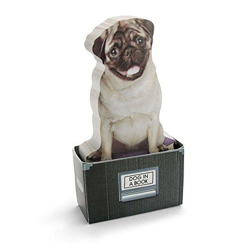 MUSTARD - Dog in A Box Sticky Notes I selbstklebende Notizzettel I Haftnotizzettel I klebend I Block I Klebenotizzettel I lustige Geschenkidee I Notizen für Kinder I Hunde Motiv - 150 Notizzettel