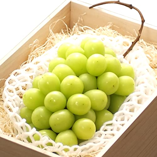 山形県産 ブドウ シャインマスカット 800g(特秀品/桐箱/1房入り)