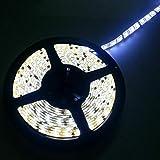 Arotelicht 24V LED Tira de luz 5M 300 SMD5050 LED Barra de luz IP20 Blanco frío Iluminación interior y luces decorativas