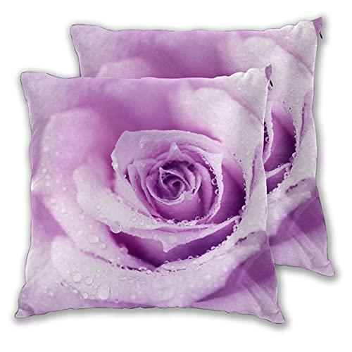 GUVICINIR Juego de 2 Fundas de cojín,Flor Resumen Mojado Rosa Hermosa Naturaleza Detalle Belleza Macro Color Lila Rocío,Decorativa Cuadrado Suave Funda de Almohada Sofá Sillas Cama,45x45cm