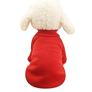 Aquiver pour animal domestique Chien Chat Chiot Pull à capuche Manteau pour chiens de petite taille Vêtements chaud Costume Apparel