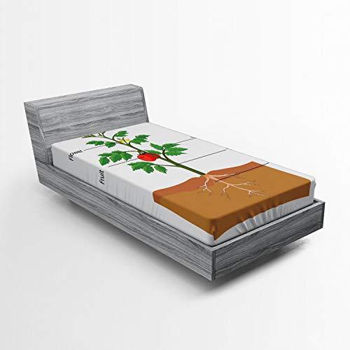 ABAKUHAUS Biologie Hoeslaken, Delen van een tomatenplant, Zachte Decoratieve Stof Beddengoed, Elastische Band Rondom, 90x 190 cm, Veelkleurig