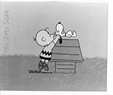 Peanuts - Charlie Brown and Snoopy - Lobby Card Publicity Still - Charles Schulz, Bill Melendez