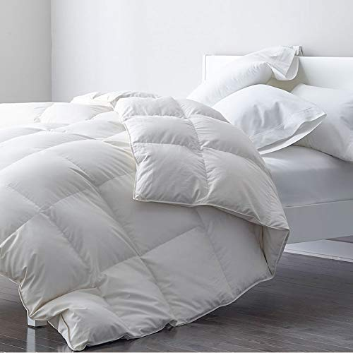 Premium Goose Feather Down Comforter Duvet Insert - 100% Skin-Friendly Cotton, Medium Weight Quilted for All Season Bedding (King, Ivory White)