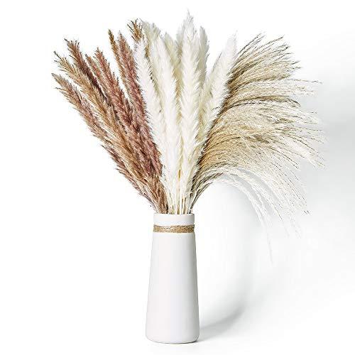 Janice Ky 60Pcs Pampa Seca Decoracion con 3 Tipos de Color Planta Boho DIY Esponjosa y Balanceante para Arreglos Florales de Boda Decoración del Hogar