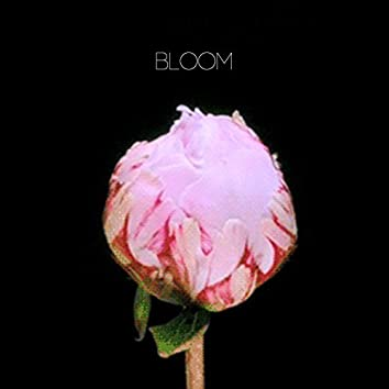 Bloom (feat. Aino Elina)