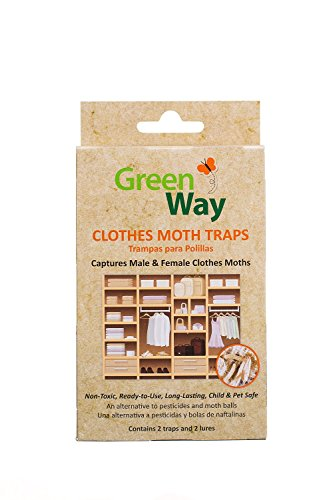 GreenWay Clothes Moth Traps 3 Pack | Pheromone Attractant Ready to Use | Heavy Duty Glue Safe NonToxic with No Insecticides or Odor Eco Friendly Kid and Pet Safe
