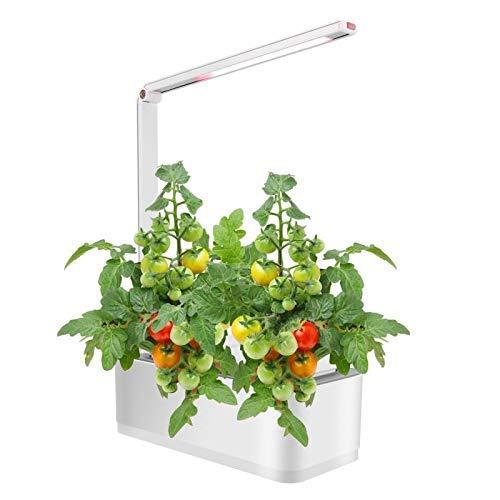 Scottish Boy Intelligent Indoor Garden Hydroponics Growing System Starter Kit with Grow Light Home Smart Countertop Herb Garden Kit Indoor