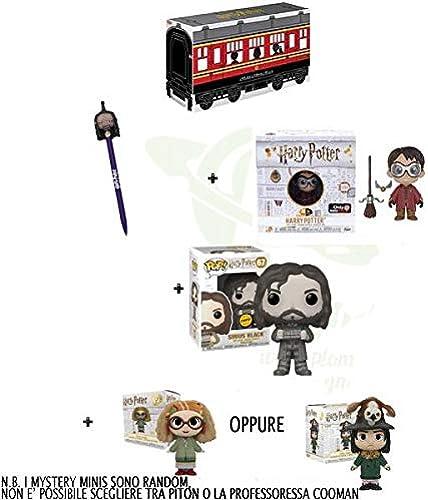 Harry Potter Kit Box Funko Pop Sirius schwarz 67 Chase Cinema Figure  1