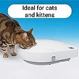 Cat Mate C500 Mangeoire automatique avec minuterie numérique pour chat et petit chien