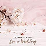 Married Life (Arr. for Piano)