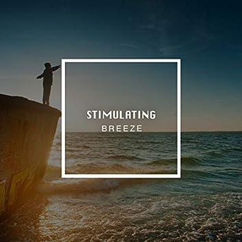# 1 Album: Stimulating Breeze