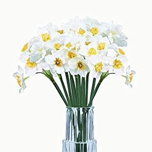 Silk Flower Arrangements Kesio Artificial Daffodil Flowers 15.8 Inches Narcissus Spring Flower Fake Silk Flower Arrangement for for Home Kitchen & Wedding Decorations (White, 6pcs)