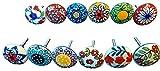 Ajuny 12 pomos de cerámica multicolor con aspecto vintage de flores para puerta y cajón