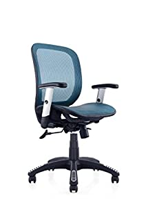 Ergomax Fully Meshed Ergo Office Chair (Blue) (B01HADR2IM) | Amazon price tracker / tracking, Amazon price history charts, Amazon price watches, Amazon price drop alerts