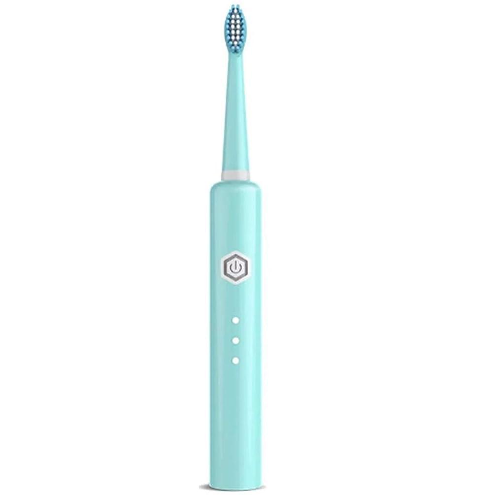 本能人口生き返らせる6スピード調整可能なUSB充電歯ブラシ、電動歯ブラシ、大人の超音波歯ブラシクリーニング剛毛防水,Blue