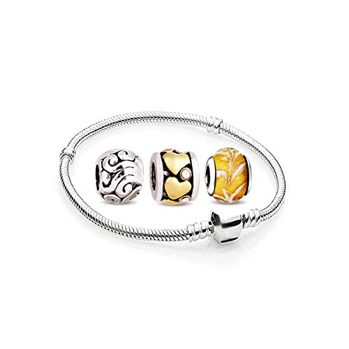 AKKi jewelry Charms Beads Armband und 3 Anhänger Starter-Set - Angebot Zirkonia Murano Glas bettelarmband Pandora Style kompatibel Damen Schmuck Geschenk Idee 19cm