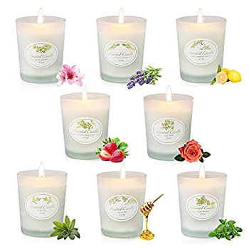 8 Pack Scented Candles Gifts Set for Women 2.5 oz Each Aromatherapy Candle Sets with Natural Soy Wax for Valentine s Day Bath Yoga Gifts for Birthday Christmas Mother s Day Clearance Candles