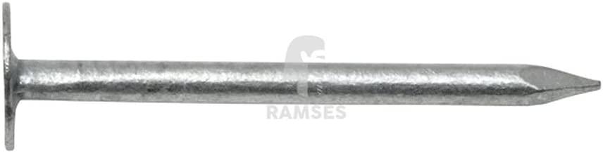 Ripox Dachpappstifte feuerverzinkt 2,8 x 25 mm 2,5 kg