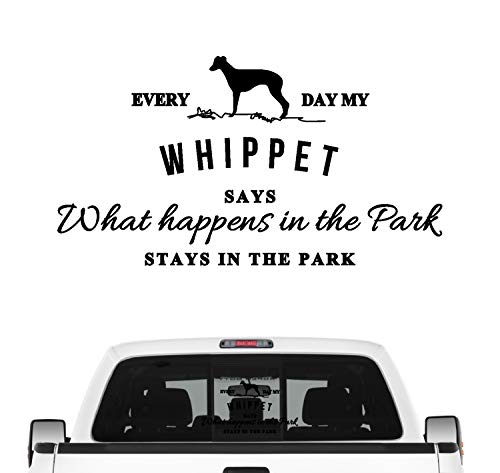 Siviwonder Whippet Vintage Hundeaufkleber Hundemotiv Auto Folie englischer Windhund Farbe Schwarz, Größe 45cm