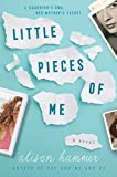 Little Pieces of Me: A Novel (English Edition)