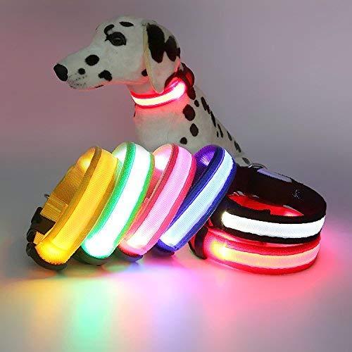 Cat Toys Leuchtende Halskette, LED-Halskette, Blinkender Haustiergürtel, geeignet für große...