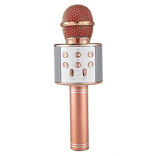 Professional WS-858 Handheld KTV Microphone Portable Wireless Karaoke Home Mic Speaker Player Microphones Rodalind